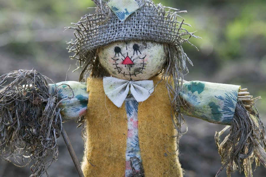 SCARECROW EVENT IN THE COMMUNITY